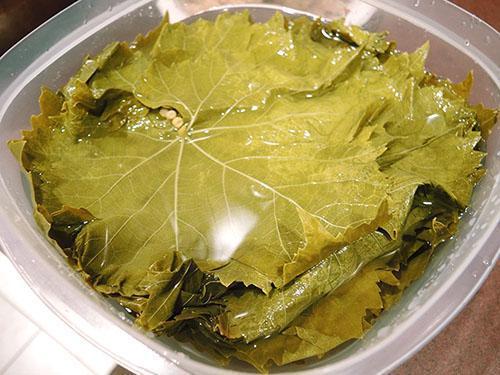 Виноградные листья - природный оксидант