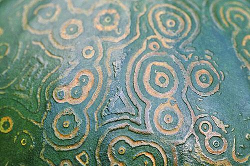 Зеленая мозаика на плоде