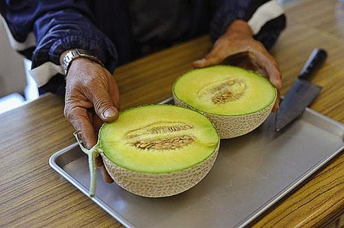 Диабетикам можно потреблять недозрелый плод дыни