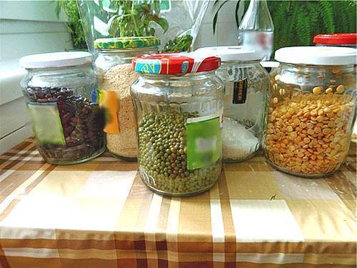 Выращивание фасоли в домашних условиях 79
