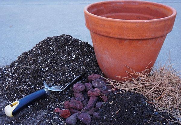 Подготовка почвенной смеси для азалии