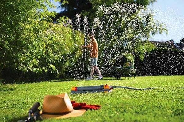 Правильный полив поможет газону быстрее восстановиться после укладки