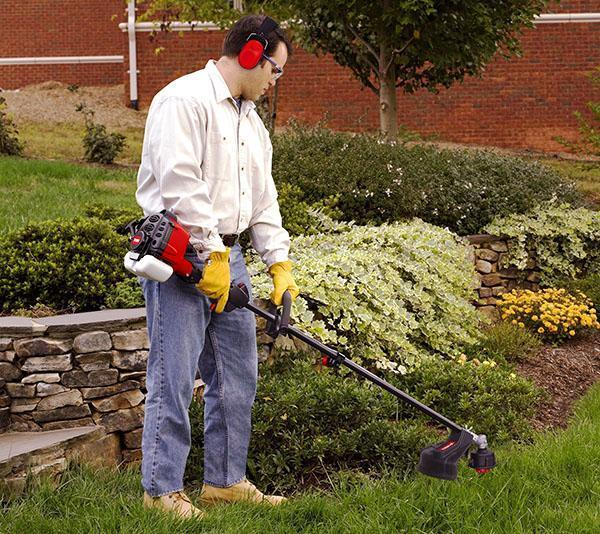 Стригут газон каждые две недели