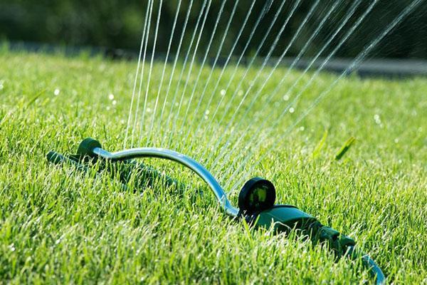 Полуавтоматический полив газона