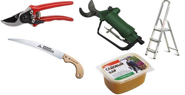 Инструменты для проведения обрезки плодовых деревьев