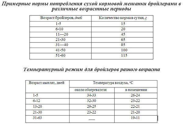 Нормы потребления бройлерами сухого корма