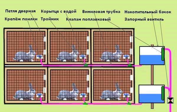 Схема установки автоматических поилок