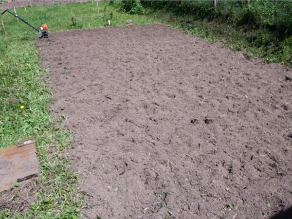 Вскопанная почва