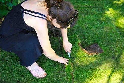 Выравниваем газон вручную