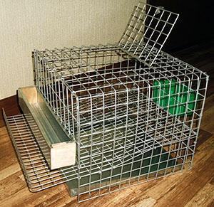 Готовая клетка для перепелов