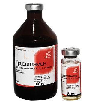 Исключить авитаминоз у птенцов поможет Тривитамин