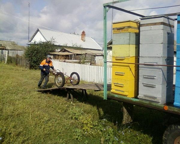 Перевозка ульев на пасеку