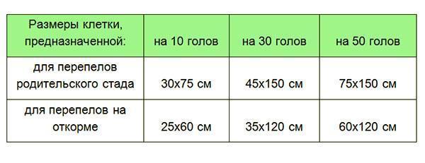 Рекомендуемые размеры клеток