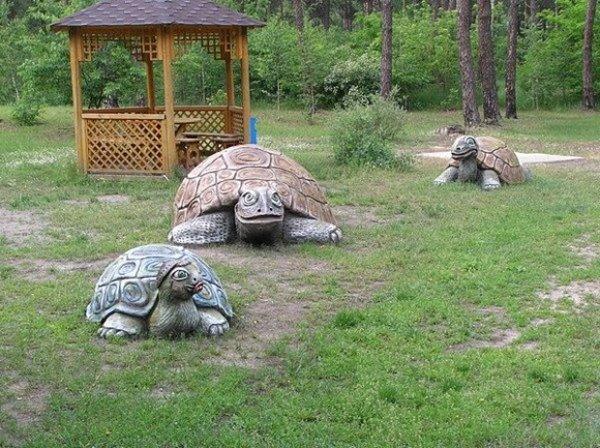 Черепахи из бетона