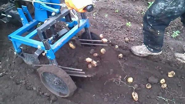Картофелекопалка на мотоблоке Нева