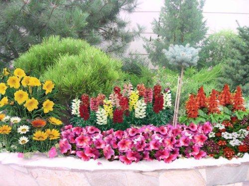 Клумба с цветами разной высоты