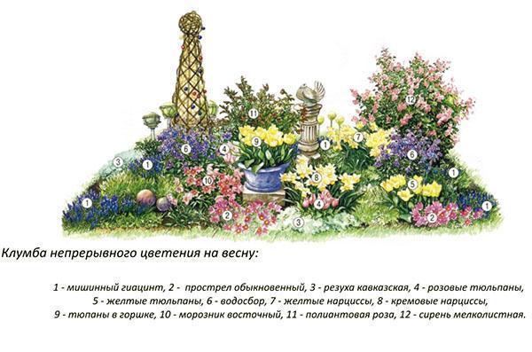 Схема цветника №5