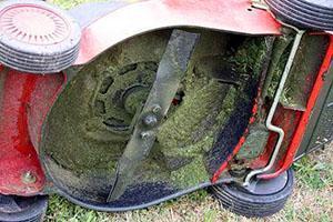 Выбор газонокосилки по степени надежности