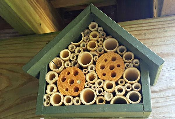 домик для диких пчел