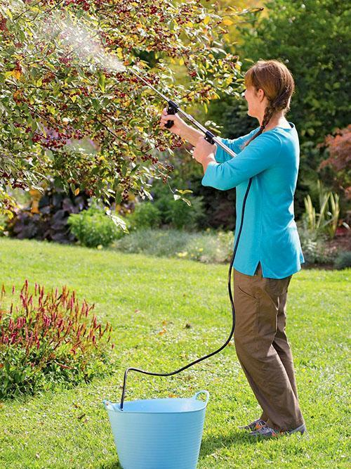 обработка вишни