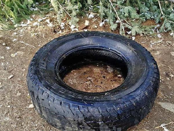 старая автомобильная шина