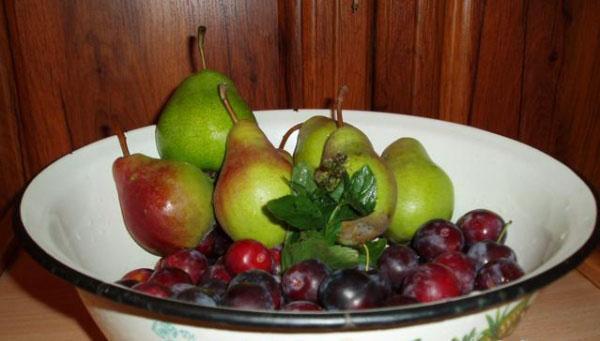 компот из слив и груш на зиму рецепты
