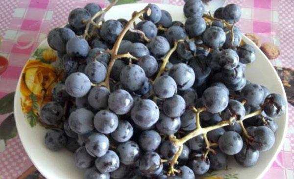 почищенные грозди винограда