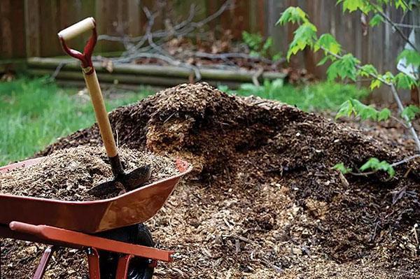 разбор компостной кучи