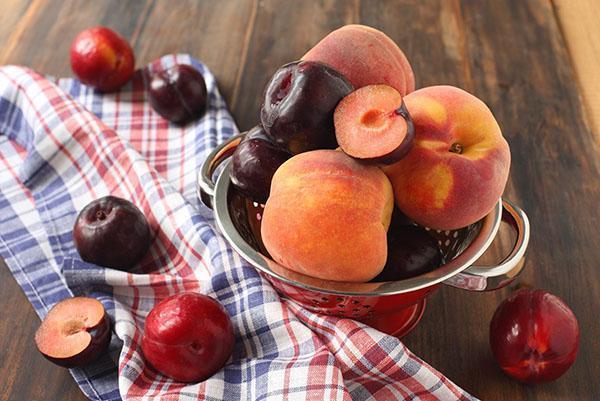 персики и сливы для компота
