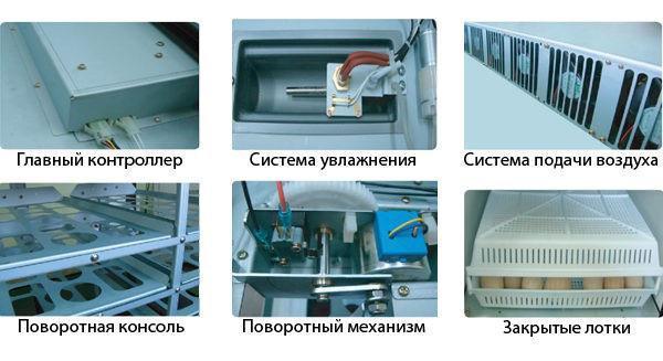 автоматизация процесса инкубации