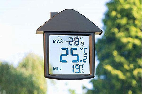 цифровой термометр с прозрачным дисплеем