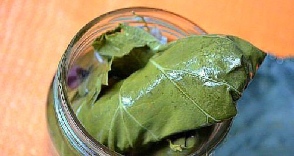 плотно наполнить банки огурцами в листьях
