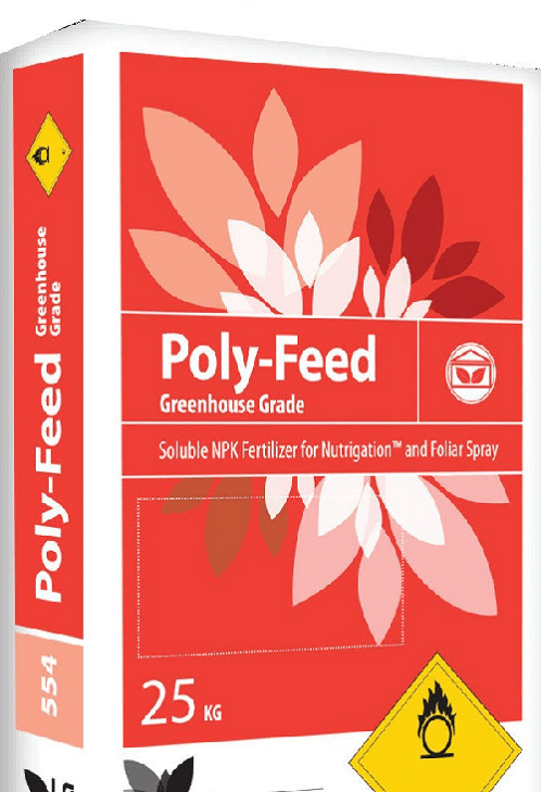 полифид красный