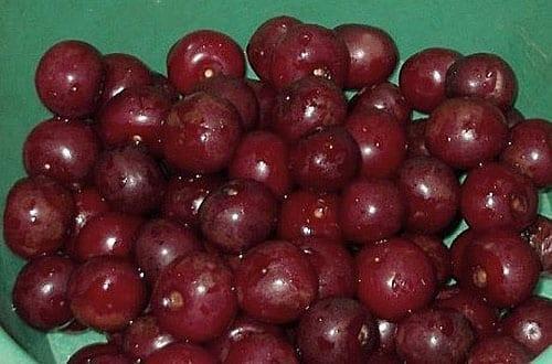 перебрать вишни