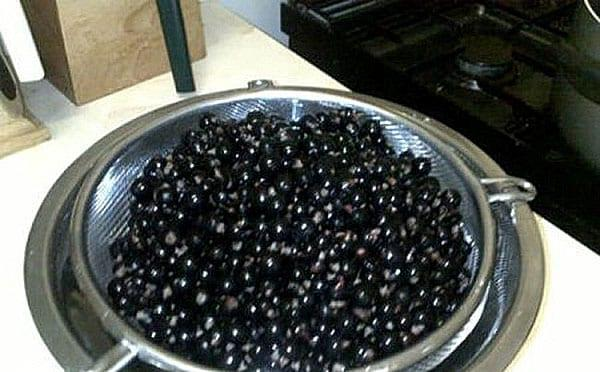 бланшировать ягоды смородины