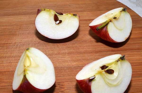 подготовить ягоды к консервации