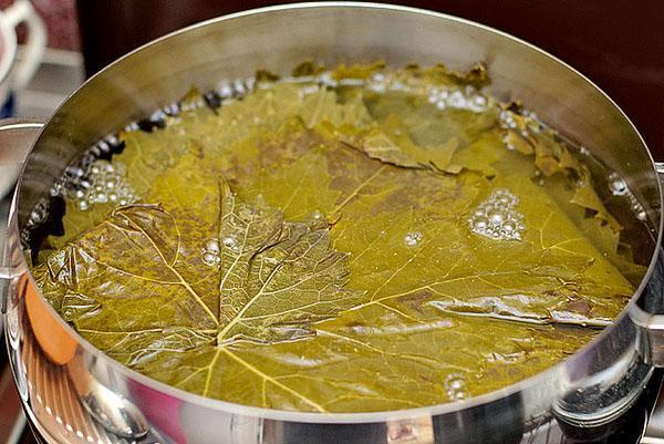чистые листья заливают кипятком