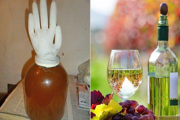 Как сделать шампанское из винограда в домашних условиях простой рецепт