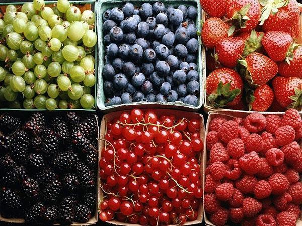 ягоды для компотов ассорти