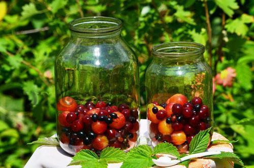 фруктово-ягодное ассорти