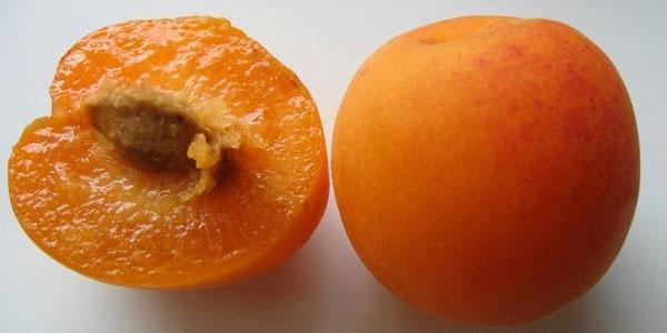 плоды богатые витаминами, кислотами, минеральными веществами