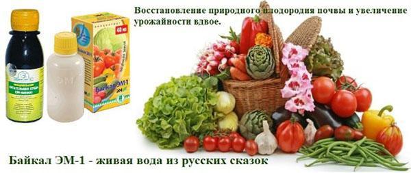 препарат Байкал ЭМ-1
