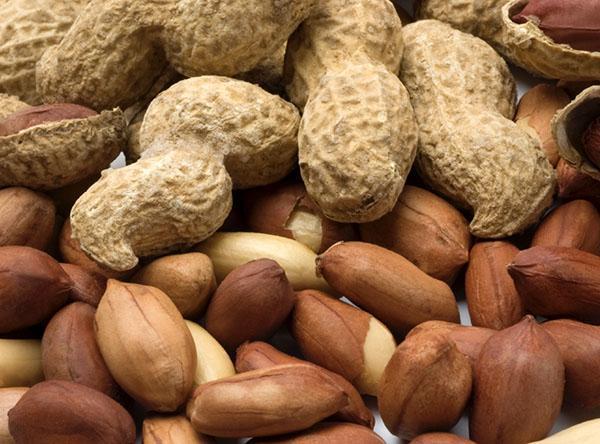 польза и вред жареного арахиса