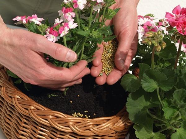 применение гранулированных удобрений