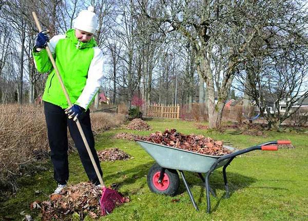 уборка листвы в апреле