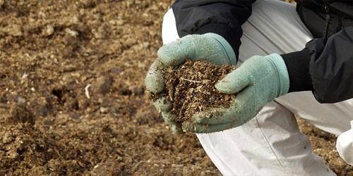 внесение в почву