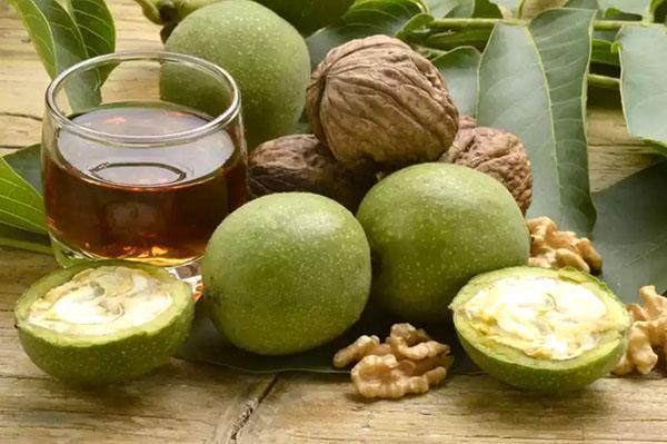 зелёные орехи в народной медицине