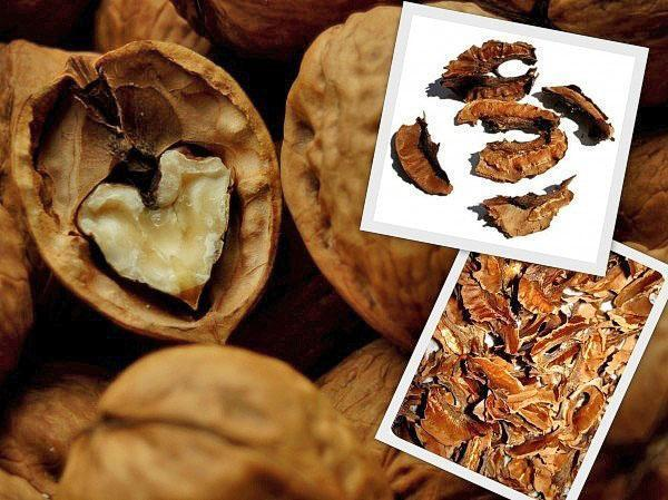 Настойка на перегородках грецкого ореха на водке, спирте, самогоне, применение, польза, видео