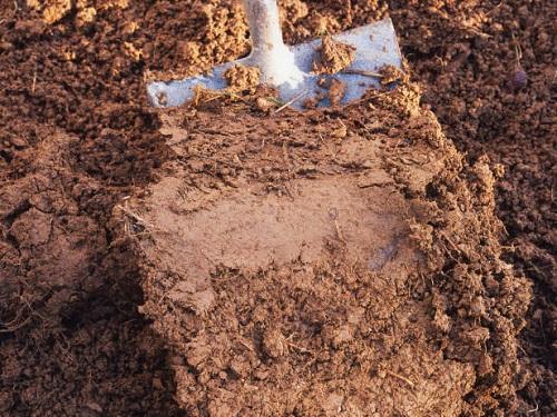 внесение глины