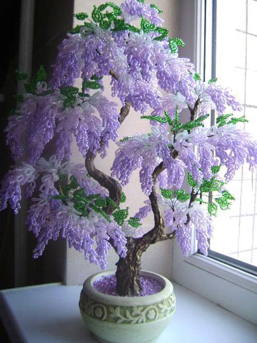 бонсай цветущая сакура